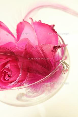 造花とグラスの素材 [FYI00436113]