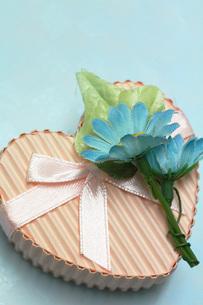ピンクのギフトボックスと青い造花の素材 [FYI00436149]