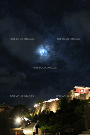 夜の首里城の素材 [FYI00436160]