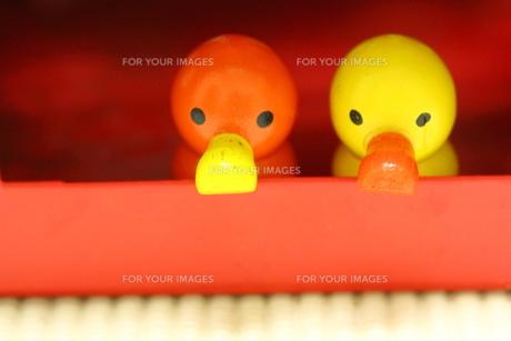 赤い家と 赤と黄色のあひるの置物の素材 [FYI00436167]