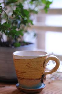 昼下がりのカフェの素材 [FYI00436191]