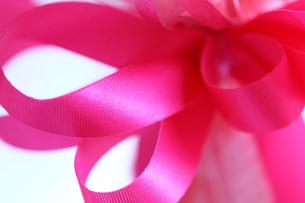 ピンクのリボンの素材 [FYI00436194]