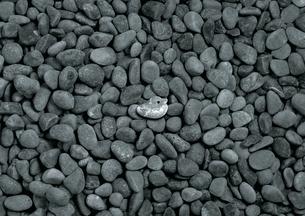 石の鳥の写真素材 [FYI00436213]