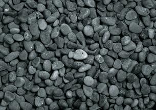 石の魚の写真素材 [FYI00436215]