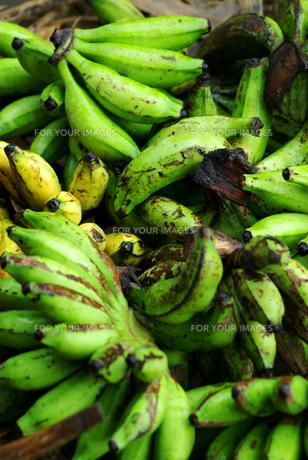 市場のバナナの写真素材 [FYI00436653]