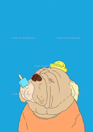 アイスを食べるブルドッグの写真素材 [FYI00436843]