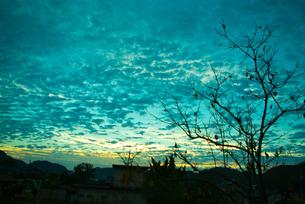 夜明け前の写真素材 [FYI00436908]