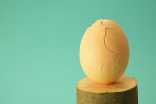 卵の写真素材 [FYI00436961]