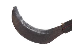 鉈鎌の刃の写真素材 [FYI00436993]