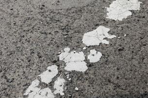 古い道の表面の写真素材 [FYI00437035]