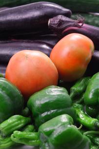夏野菜の写真素材 [FYI00437201]