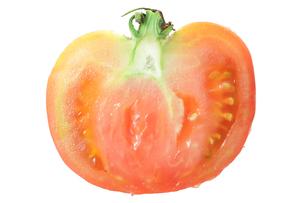 トマトの素材 [FYI00437207]