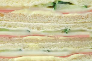 サンドイッチの写真素材 [FYI00437272]