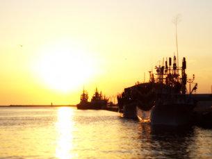 夕日の埠頭の写真素材 [FYI00437330]