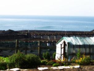 海の見える丘の写真素材 [FYI00437336]