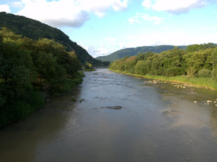 森の中の河の写真素材 [FYI00437369]