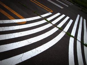 道路の曲がった白線の写真素材 [FYI00437386]