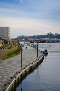 釧路川の川辺の写真素材 [FYI00437387]