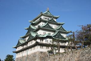 秋の名古屋城の写真素材 [FYI00437444]