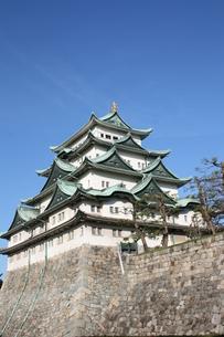 秋の名古屋城の写真素材 [FYI00437452]