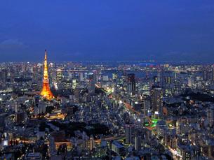 東京タワー × 光の写真素材 [FYI00437487]