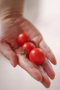 女性の手の上にあるミニトマト000001の写真素材 [FYI00437514]
