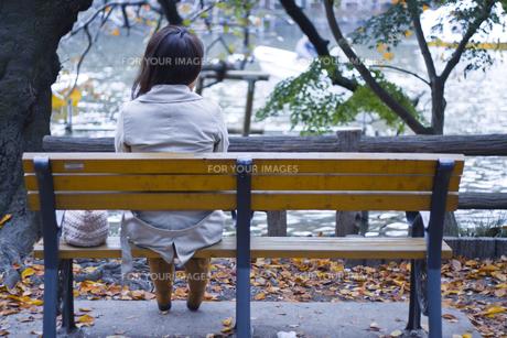 ベンチに座る若い女性の後姿000001の写真素材 [FYI00437531]