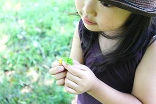 クローバーを持つ女の子の写真素材 [FYI00437728]