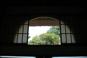 窓の素材 [FYI00437778]
