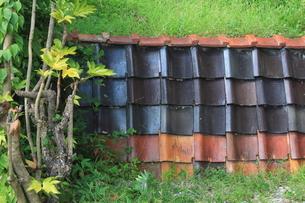 瓦の塀の写真素材 [FYI00437782]