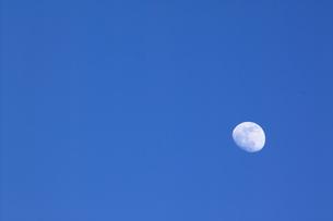 月の写真素材 [FYI00437930]