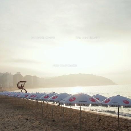 早朝のビーチパラソルの写真素材 [FYI00438948]