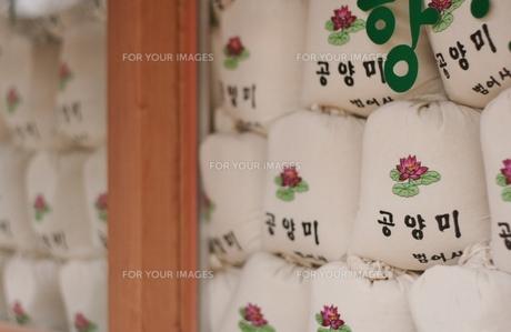 お寺へ奉納されたお米の山の写真素材 [FYI00438949]