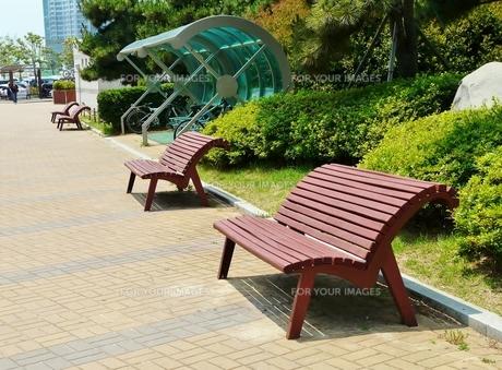 冬柏公園のかもめのベンチの写真素材 [FYI00438994]