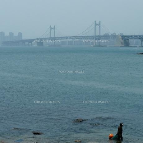 広安大橋.と海女の写真素材 [FYI00439001]