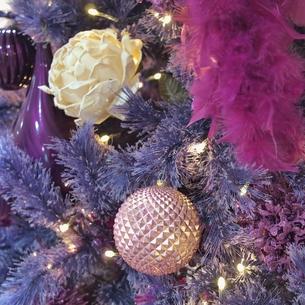 クリスマスのオーナメント(紫)の写真素材 [FYI00439003]