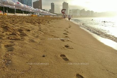 早朝の砂浜の足跡とパラソルの写真素材 [FYI00439017]