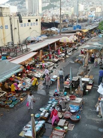 チャガルチ市場と釜山市街の写真素材 [FYI00439038]