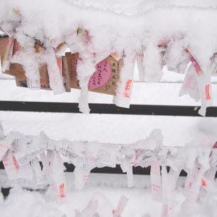 降り積もる雪の写真素材 [FYI00439052]
