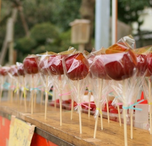 たくさん並んだりんご飴の写真素材 [FYI00439056]