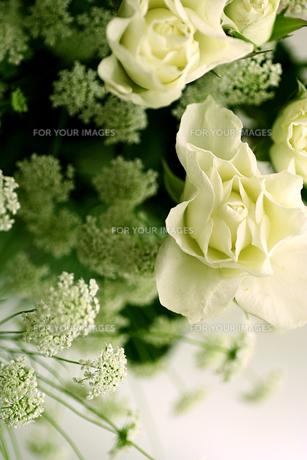 白いバラの花束の写真素材 [FYI00439433]