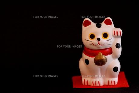 招き猫(横位置)の写真素材 [FYI00439530]