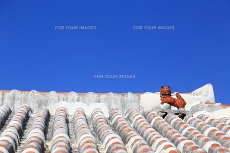 赤瓦屋根とシーサーと青空の写真素材 [FYI00439624]