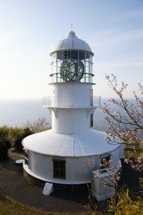 室戸岬灯台と桜室戸ジオパークの写真素材 [FYI00439761]