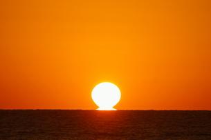 だるま朝日だるま太陽室戸岬室戸ジオパークの写真素材 [FYI00439780]