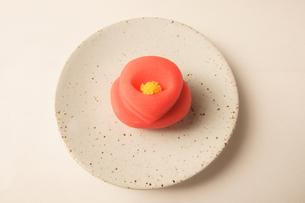 菓子 和菓子 ツバキの写真素材 [FYI00439886]