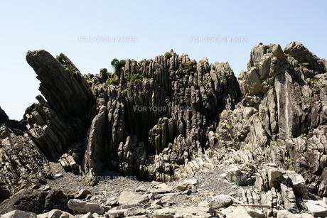 室戸岬 室戸ジオパーク ジオパーク タービダイト 砂岩泥岩互層の素材 [FYI00439888]