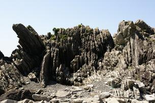 室戸岬 室戸ジオパーク ジオパーク タービダイト 砂岩泥岩互層の写真素材 [FYI00439888]