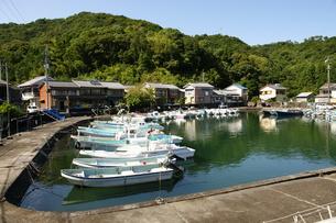 漁港 漁村 船溜まりの写真素材 [FYI00439929]