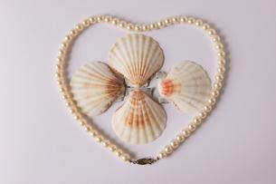 二枚貝 真珠 ネックレス ハートの写真素材 [FYI00439962]